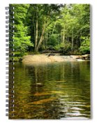 The Swimming Hole Spiral Notebook