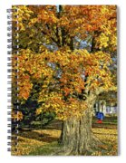 The Swinging Tree Spiral Notebook
