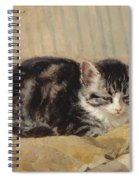 The Tabby Spiral Notebook