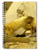 The Tackle Spiral Notebook