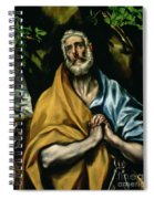 The Tears Of St Peter Spiral Notebook
