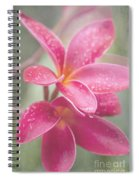 The Temple Tree Spiral Notebook