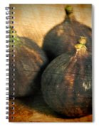 The Three Amigos Spiral Notebook