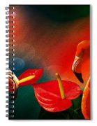 The Three Flamingos - Featured In 'feathers And Beaks' 'wildlife' And 'comfortable Art'  Groups Spiral Notebook