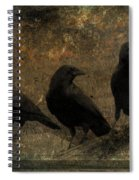The Three Black Crows Spiral Notebook