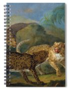 The Three Leopards Spiral Notebook
