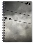 The Trace 11.25 Spiral Notebook