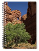 The Tree And The Window Spiral Notebook
