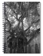 The Tree Vines Spiral Notebook