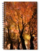 The Trees Dance As The Sun Smiles Spiral Notebook