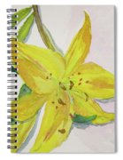 The Trickiness Of Yellow Spiral Notebook