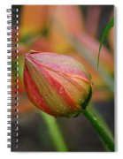 The Tulip Bud Spiral Notebook