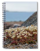 The Tundra... Spiral Notebook