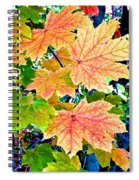 The Turning Leaves Spiral Notebook