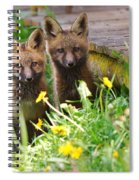 The Twins Spiral Notebook