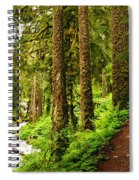The Twisting Path Winding Through Paradise  Spiral Notebook