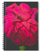 The Ultimate Red Rose Spiral Notebook