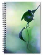 The Unbearable Lightness Of Being. Natural Wonders Spiral Notebook