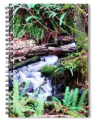 The Unknown Creek Spiral Notebook