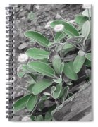 The Untouchable Plant Spiral Notebook