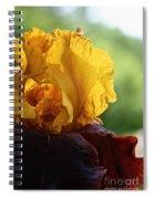 The Velvet Iris Spiral Notebook