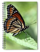 The Viceroy Spiral Notebook