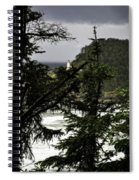 The View Of The Heceta Lighthouse Spiral Notebook
