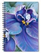 The Violet Spiral Notebook