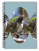 The Warbler Spiral Notebook