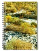 The Wash Spiral Notebook