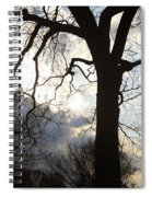 The Washington Monument Lost In The Trees Spiral Notebook