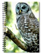 The Watch Spiral Notebook