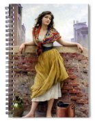 The Water Carrier Spiral Notebook