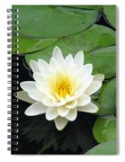 The Water Lilies Collection - 01 Spiral Notebook