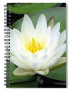 The Water Lilies Collection - 04 Spiral Notebook