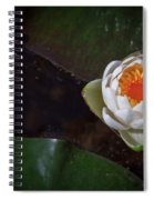 The Water Lily Spiral Notebook