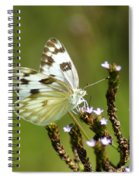 The Western White Spiral Notebook