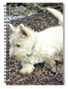 The Wheaten Pup Spiral Notebook