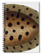 The Whiff Spiral Notebook