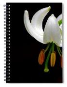 The White Form Of Lilium Martagon Named Album Spiral Notebook
