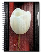 The White Tulip Spiral Notebook