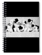 The Whole Gang Spiral Notebook