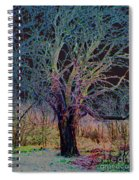 10994 The Widow Tree Spiral Notebook