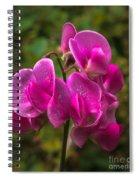 The Wild One Spiral Notebook