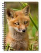 The Wild Pup Spiral Notebook