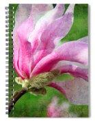 The Windblown Pink Magnolia - Flora - Tree - Spring - Garden Spiral Notebook