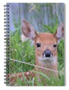 The Wink Spiral Notebook