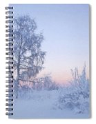 The Winter Light Spiral Notebook