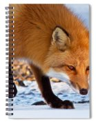 The Wise One Spiral Notebook
