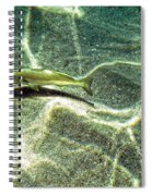 The Wishing Fish Spiral Notebook